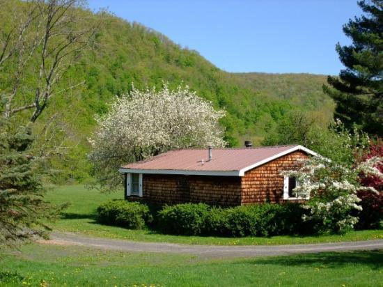 Cold Spring Lodge: One of the Cabins