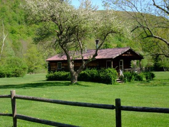 Cold Spring Lodge: Another Cabin