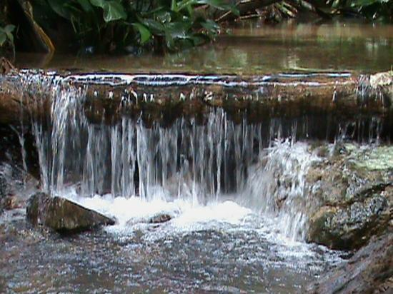 Paria Falls : One of many streams on the coastal path