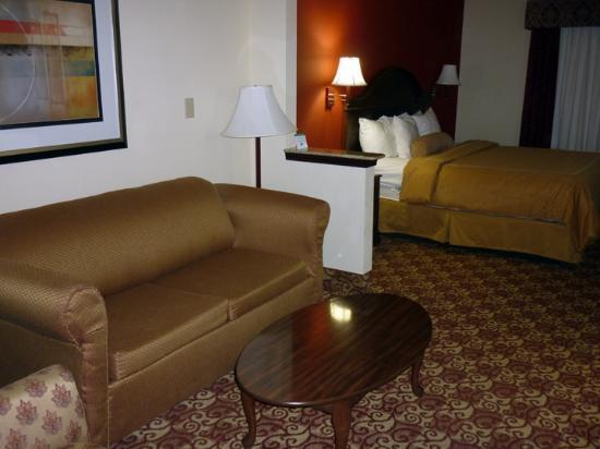 Comfort Suites Milledgeville : Couch