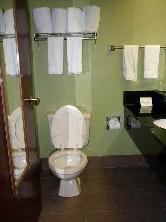 Comfort Suites Milledgeville : Bathroom