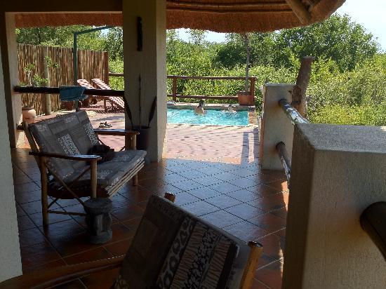 Bushwise Safaris: Pool