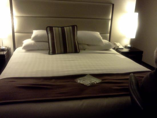 Hyatt Regency Cambridge, Overlooking Boston: a very, very comfortable king bed!!!