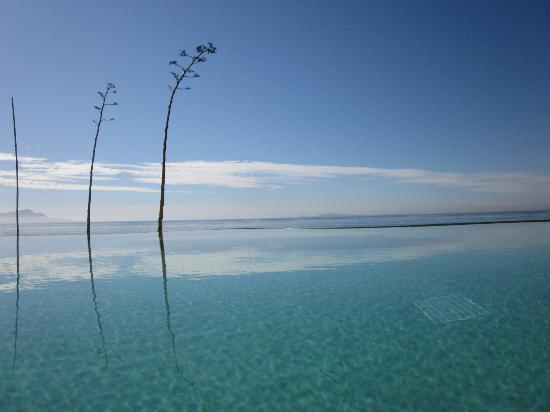 Las Rosas Hotel & Spa: Awesome Infinity Pool