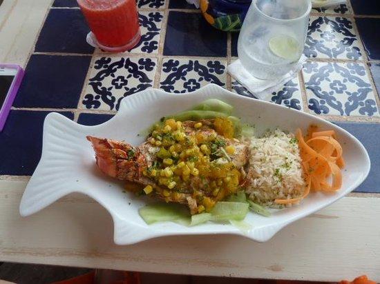 Villa Las Estrellas Restaurant: Lobster