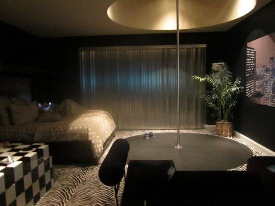 Delton Grand Resort   Spa  inside our room. Stripper pole  sweet carpet   Picture of Delton Grand Resort   Spa