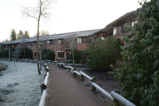 Center Parcs Whinfell Forest The Lakeside Apartments