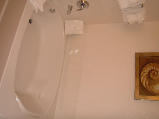 Palisades Resort: lovely tub