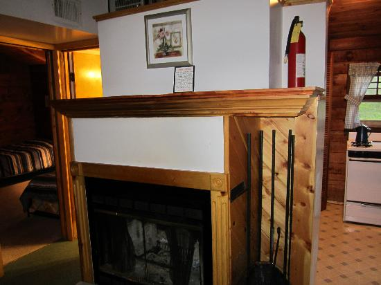 Cold Spring Lodge: Wood Burning Fireplace