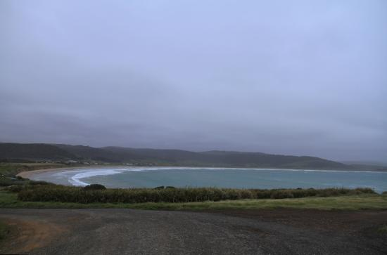 Curio Bay Accommodation: View of Purpoise Bay