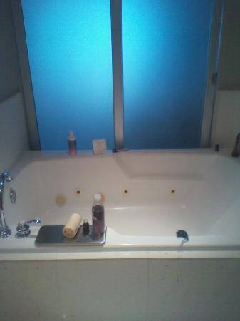 Seminole Hard Rock Hotel Tampa: Jetted tub for 2! Definitely NOT tiny!