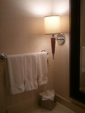 Doubletree Hotel Chicago Oak Brook: Bathroom towel rack
