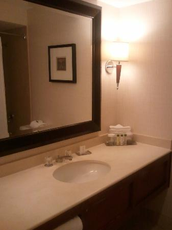 Doubletree Hotel Chicago Oak Brook: Bathroom counter