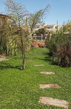 Meerkat Guesthouse: manicured garden