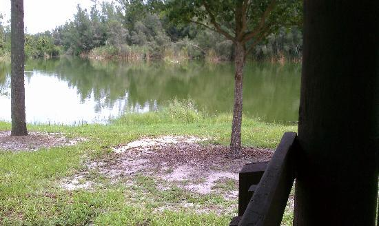 Lakes Regional Park: Park Habitat