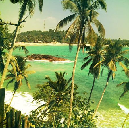 Club Mirissa Villas & Hotels: Mirissa beach surf and chill spot