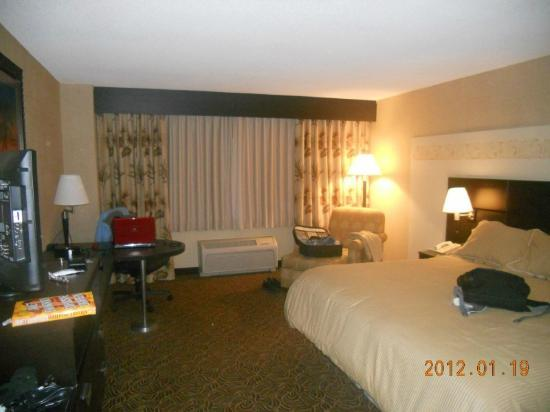 Treasure Island Resort & Casino: Room view