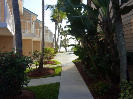 Jupiter Waterfront Inn: Backyard walkway