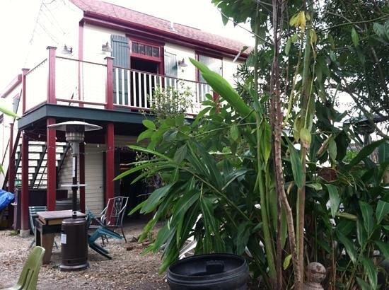 Bacchanal Fine Wine & Spirits: a view from the backyard