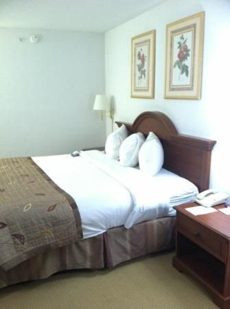 Baymont Inn & Suites Marshfield: Bed