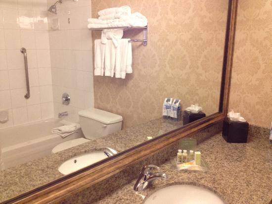 Holiday Inn Vancouver Airport: The bathroom