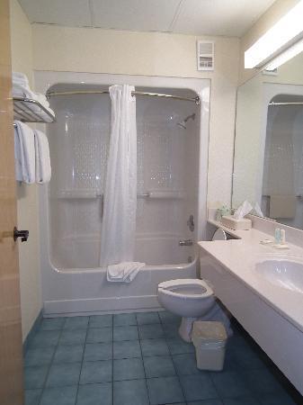 Comfort Inn and Executive Suites: salle de bains