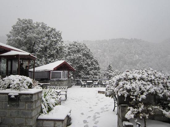 The Naini Retreat: Nainital from Naini Retreat