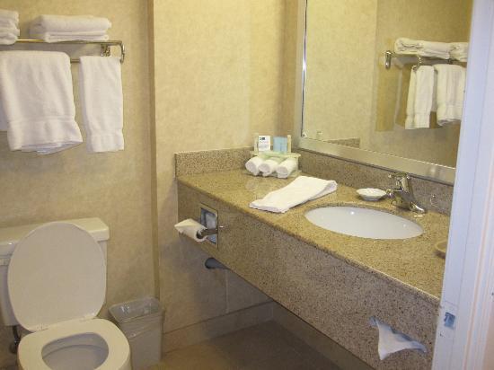 Holiday Inn Express Hotel & Suites Brampton: Bathroom