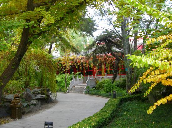 Bamboo Garden Hotel: Hotel Giardino