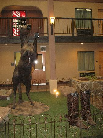 Great Texas Decor! - Picture Of Days Inn Lubbock South, Lubbock