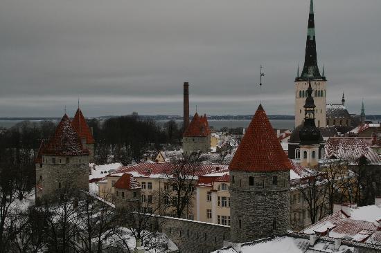 My City Hotel Tallinn: Vue de la vieille ville