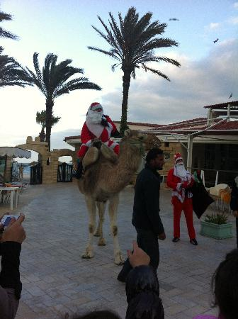 Riadh Palms Hotel: Christmas 2011 Santa Arriving on his Camel