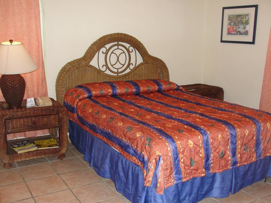 Mayan Princess Beach & Dive Resort: Condo room, tv is in living room