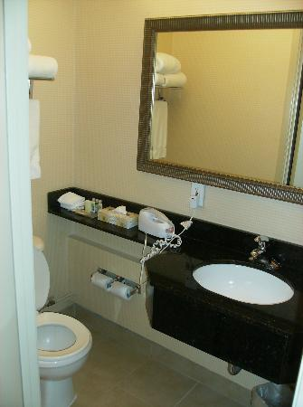 Holiday Inn Toronto Airport East: Bathroom vanity area