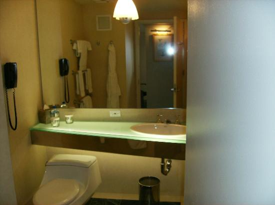 The Premier New York Times Square: Nice big bathroom