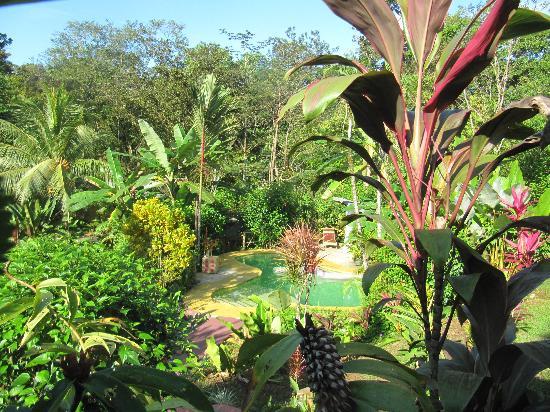 Phidjie Lodge: du bungalow vue sur la piscine