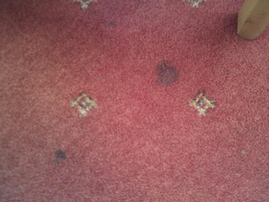 Inn on the Coast: stains on bedroom carpet