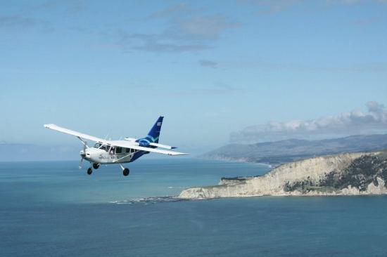 Wings Over Whales: GA8 Airvan