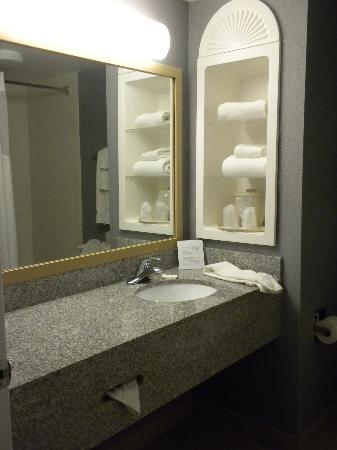 Holiday Inn Express Hotel & Suites Cincinnati : bathroom