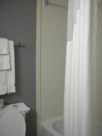 Holiday Inn Express Hotel & Suites Cincinnati: shower