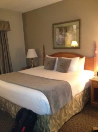 Stone Gate Inn : king bed in a very nice room