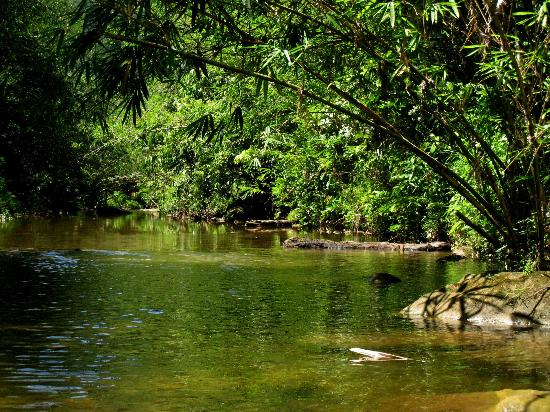 Bidayuh Annah Rais Longhouse Homestay: Hot Spring