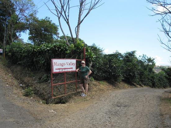 Hotel Mango Valley: entrance to mango valley
