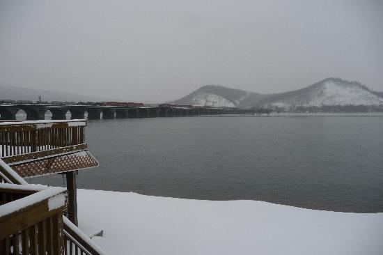 Bridgeview Bed & Breakfast : January 2012 snowfall