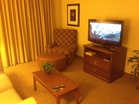 Homewood Suites Newark-Cranford : Living room area.