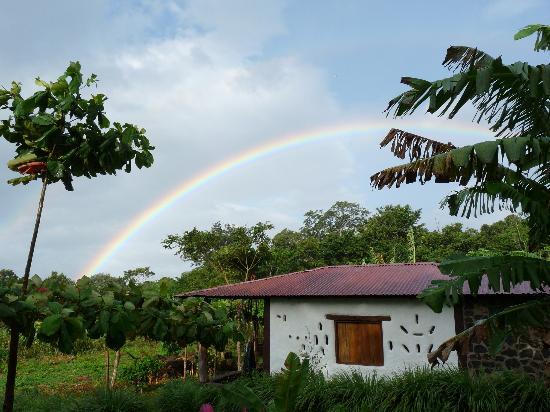 Finca Mystica: Rainbow
