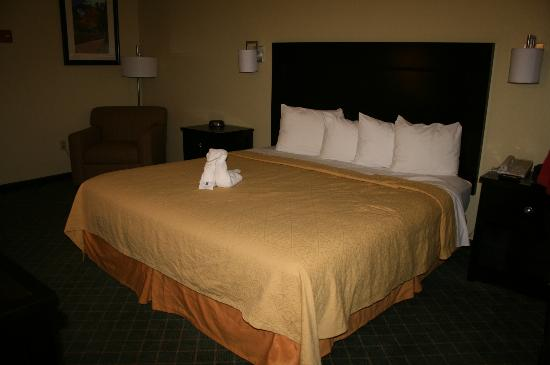 Quality Inn And Suites Gallup: King Room
