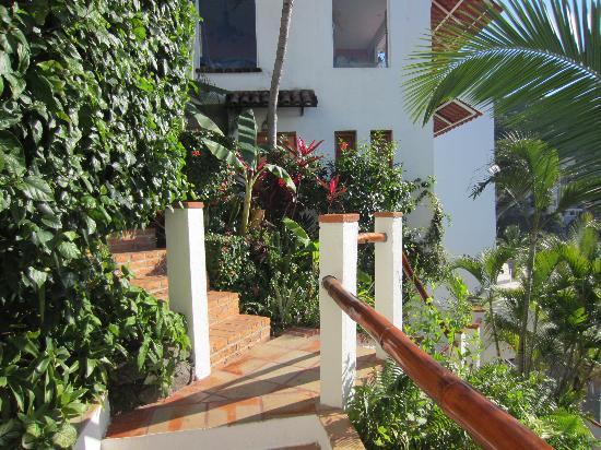 Casa de los Arcos: Lush garden