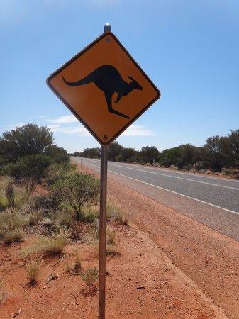 Terytorium Północne, Australia: la carretera roja australiana