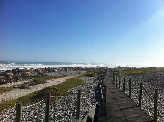 Cape Agulhas, Sudáfrica: The path that leads to the southern most tip of Africa